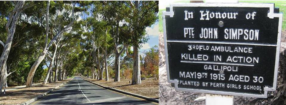 Honour Avenues Perth
