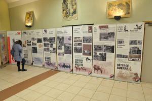 expo 14 18 2014-6
